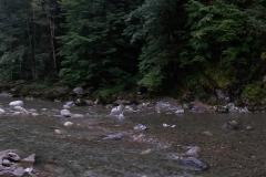 Im Fluss unter dem Hochseilgarten